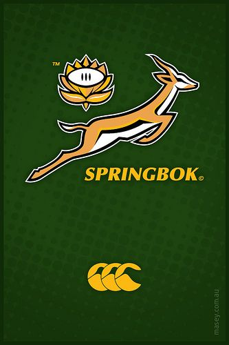 Springboks Iphone Wallpaper Springbok Rugby Rugby Logo Rugby Wallpaper