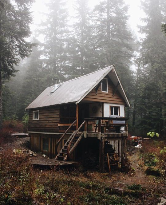 Cabins & Cocoa