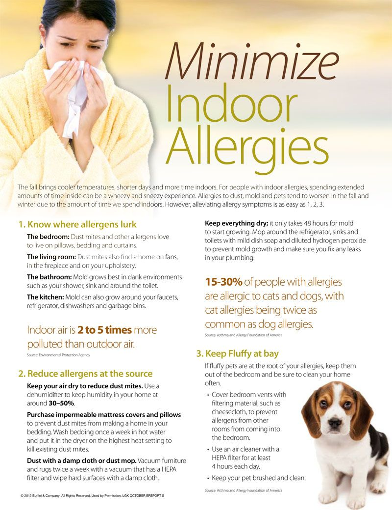 How to minimize indoor allergies | Lifestyle | Pinterest | Allergies ...