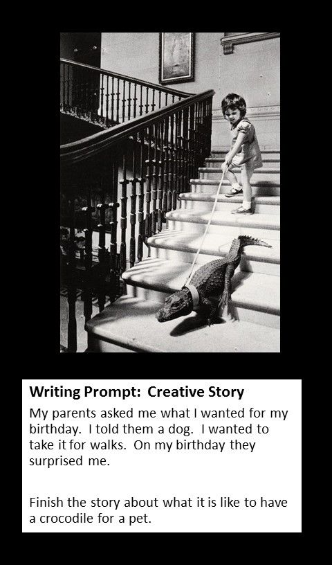 Creative writing starters for high school