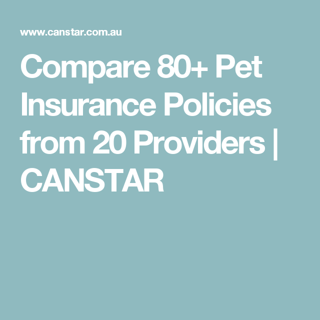 Compare 80 Pet Insurance Policies From 20 Providers Canstar