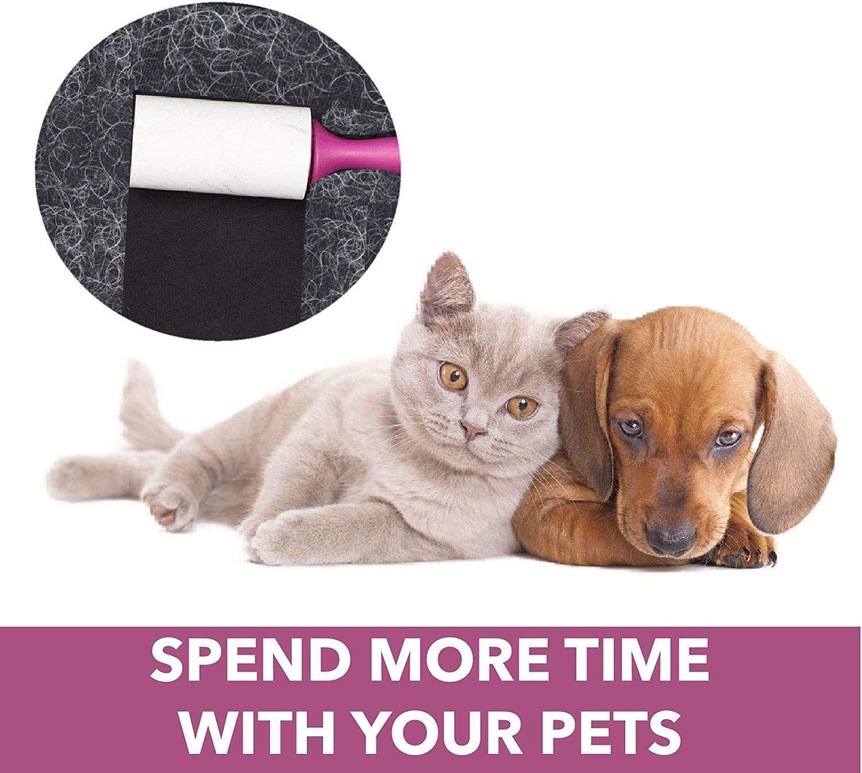 4d1d918b670374b491e10896c6190164 - How To Get Cat Hair Off Without Lint Roller