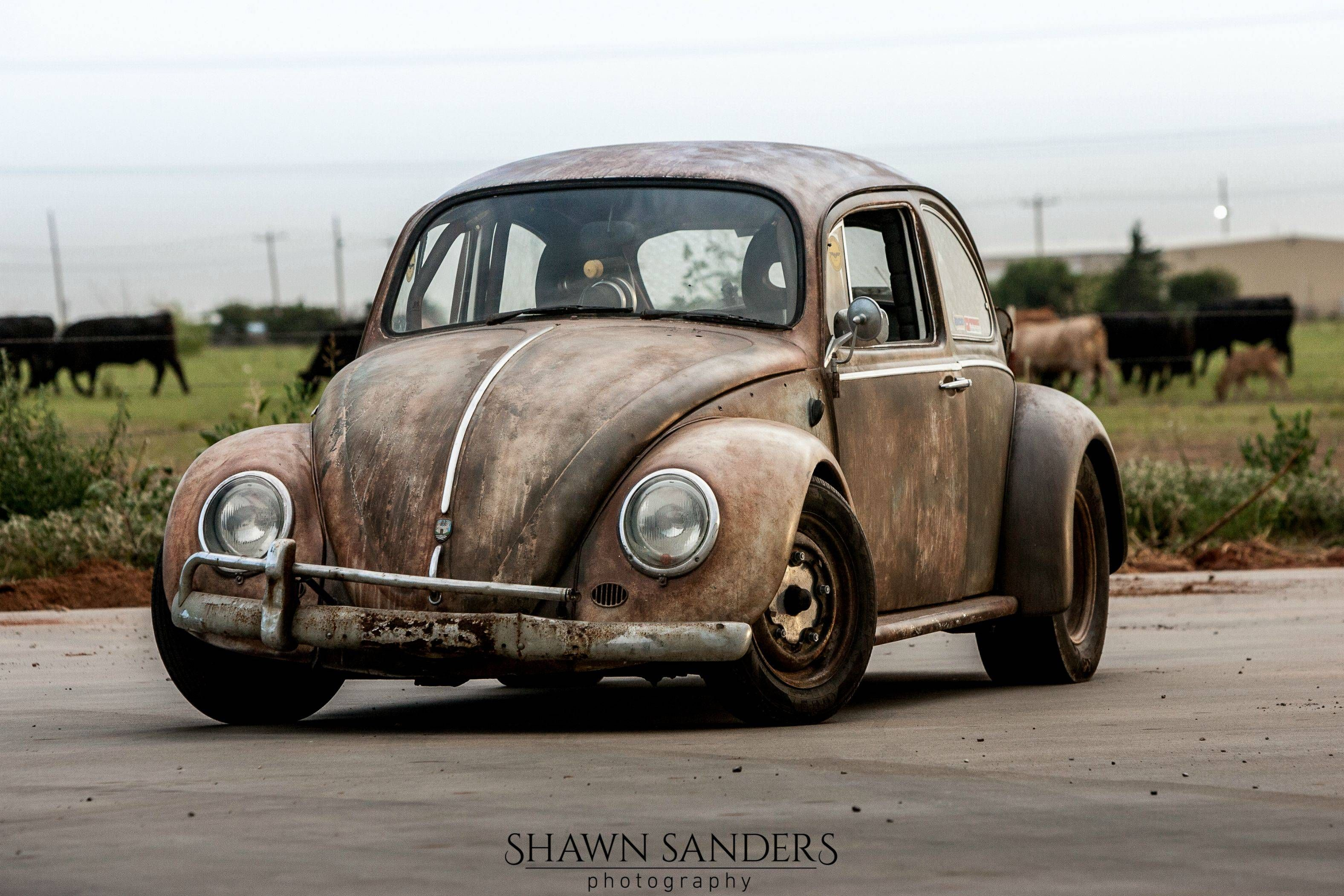 Pics For Dung Beetle Street Outlaws