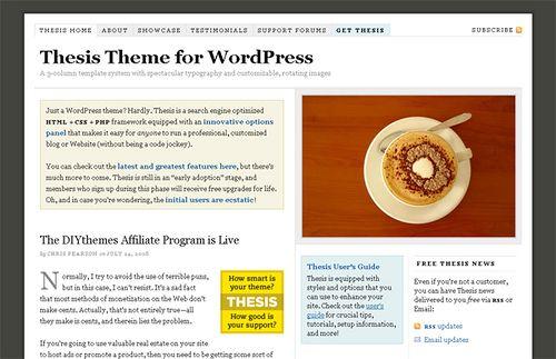 thesis wordpress theme   WordPress Blog & Magazine Themes - wordpress themes for sale  http://themeforest.net/?ref=szamriy