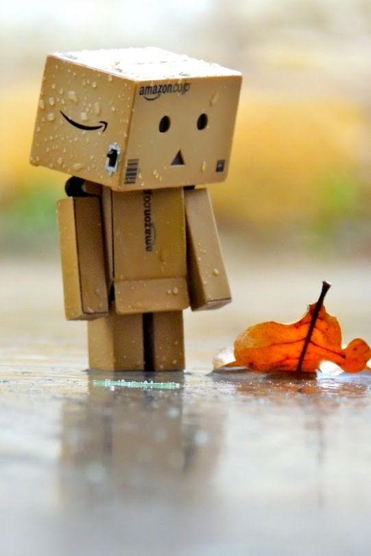 Amazon Box Autumn Time Danbo Amazon Box Box Art