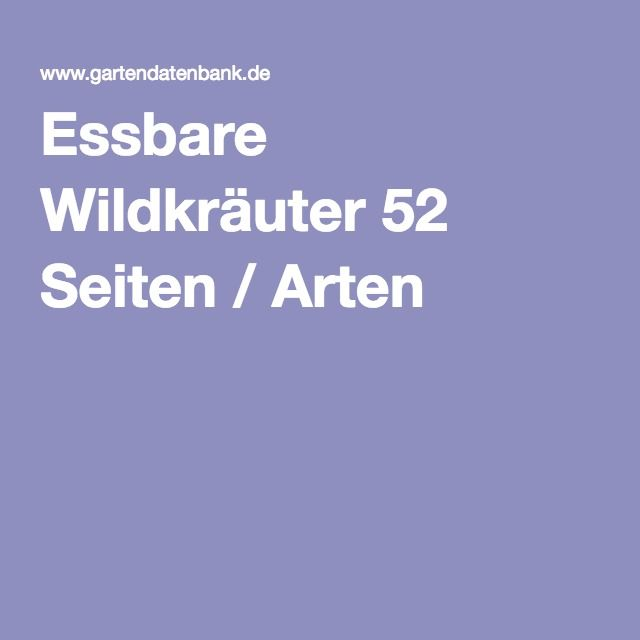 Essbare Wildkräuter 52 Seiten / Arten
