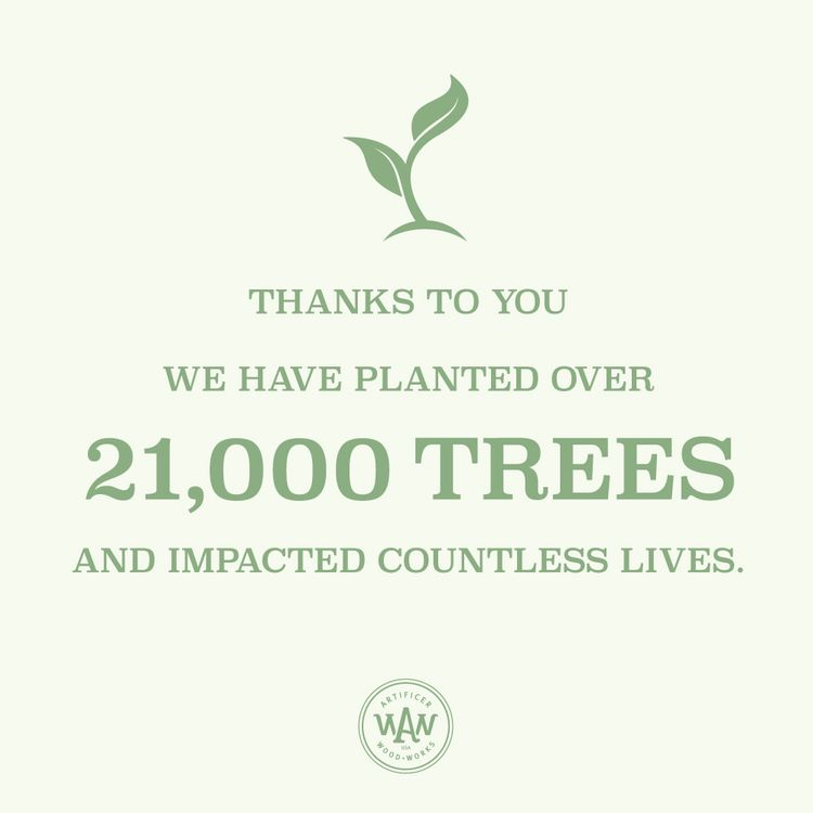 Blog Post: 3 Ways Planting 21,000 Trees are Impacting Children | Artificer Wood Works #artificerwoodworks #givingback #plantatree