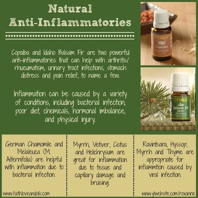 Anti-inflammatory Relief with Young Living - German Chamomile, Copaiba, Idaho Balsam Fir