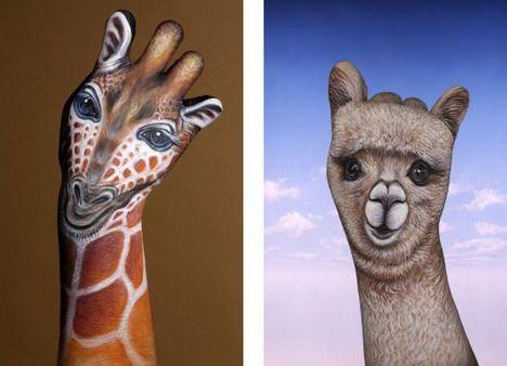 giraffe and Alpaka  ;)