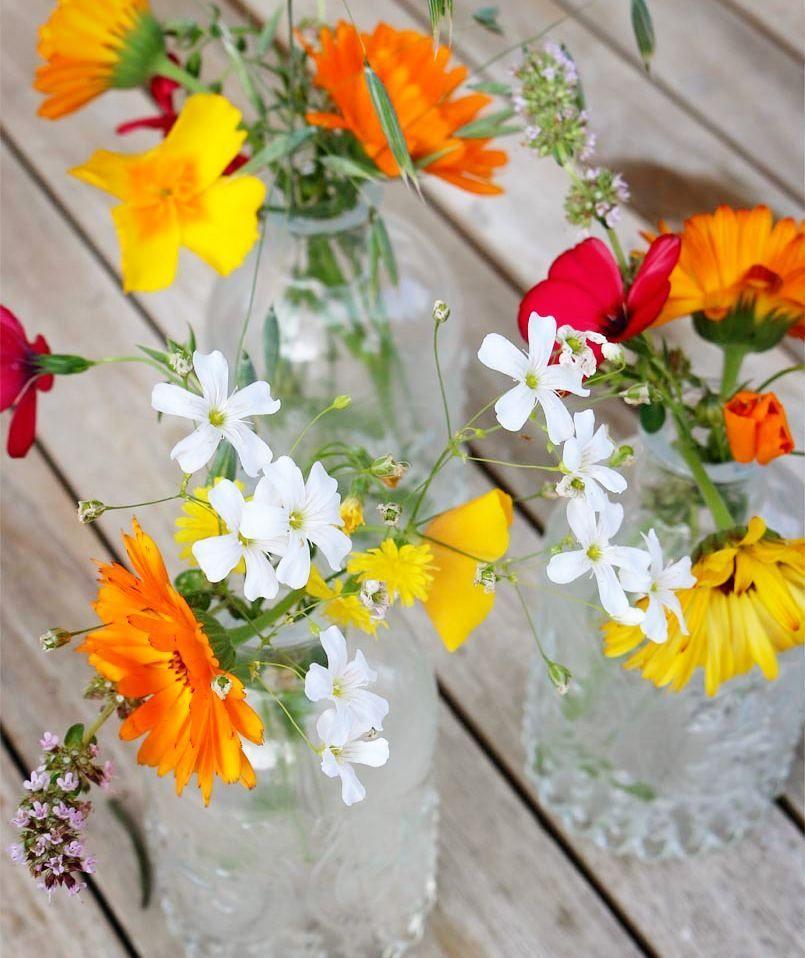 Photo of Der Sommer muss auf den Tisch! Meine kleinen Flaschenvasen werden gerade bunt i …