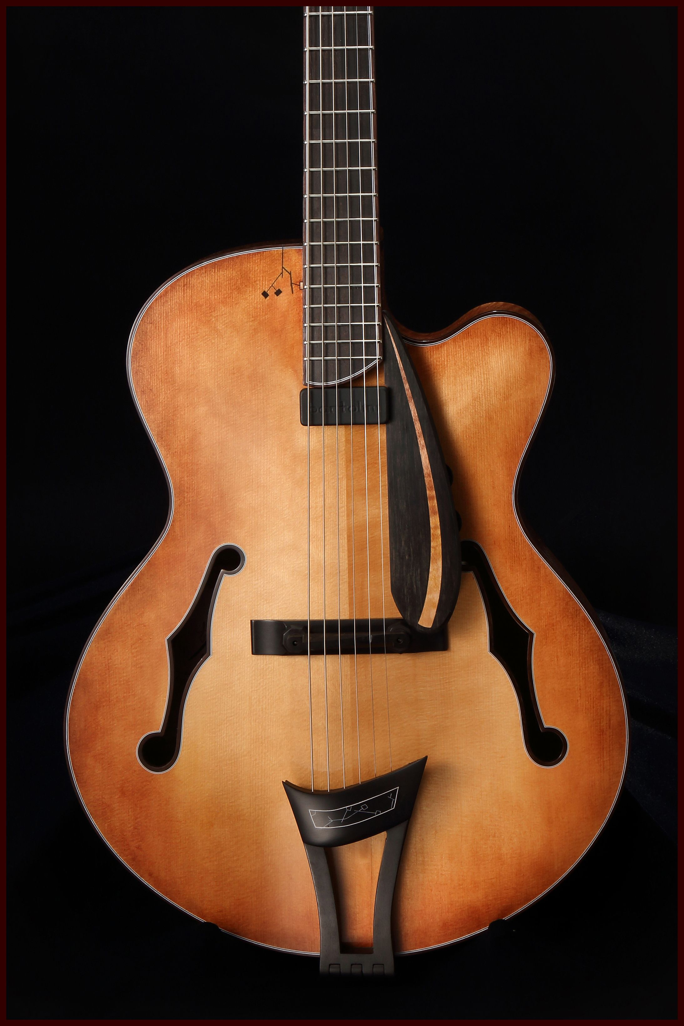 Santa Barbara Acoustic Instruments Celebration Luthiers Guitar Music Guitar Guitar Collection