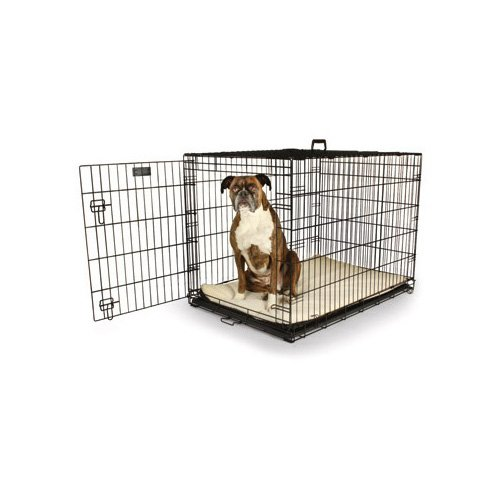 Petco Classic 1 Door Dog Crate X Small Petco Store Dog Kennels And Crates Dog Crate Large Dog Crate