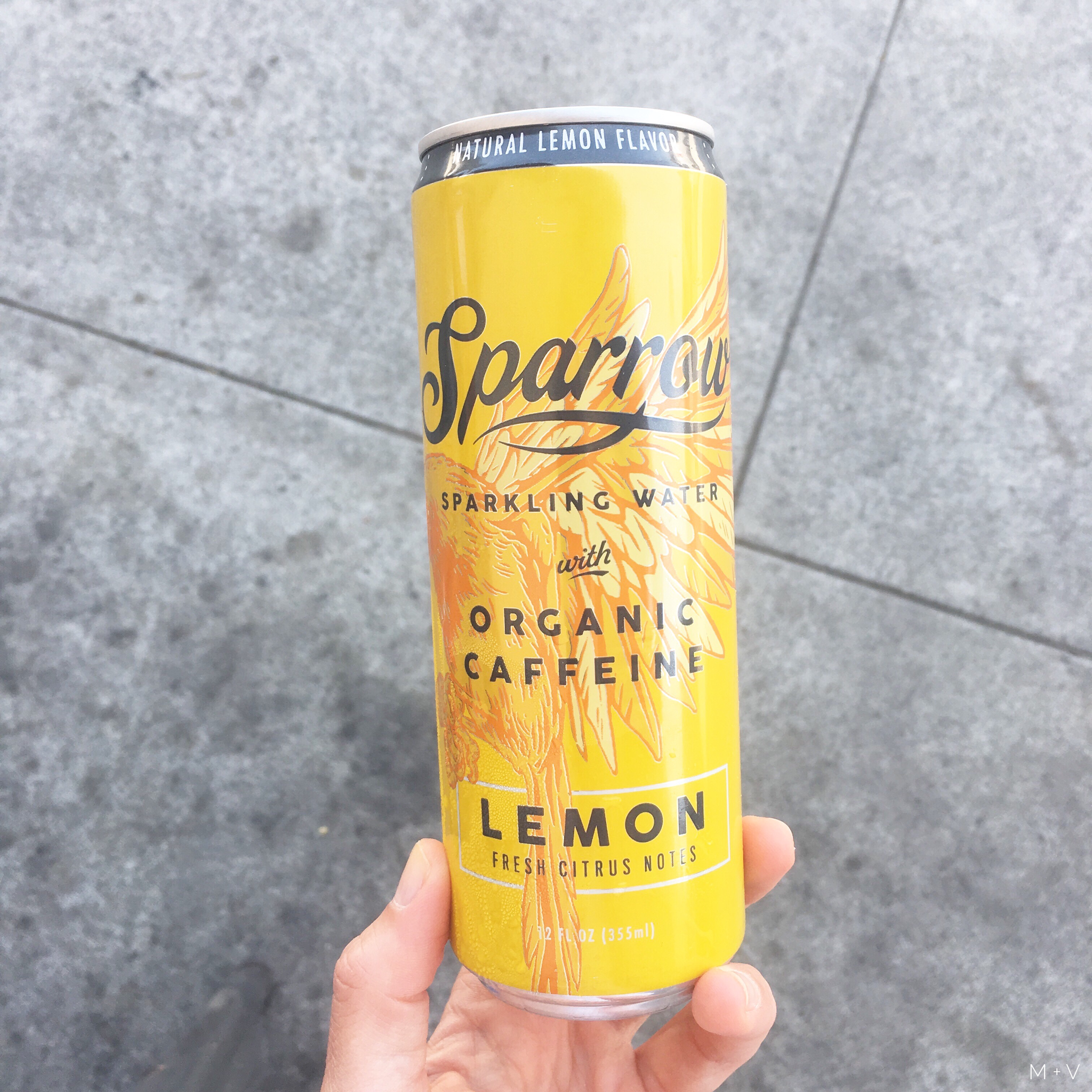 Meet Sparrow, the sparkling water that's changing the