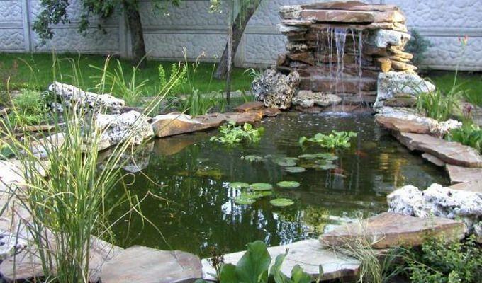 Искусственный пруд на дачном участке: фото и видео ...