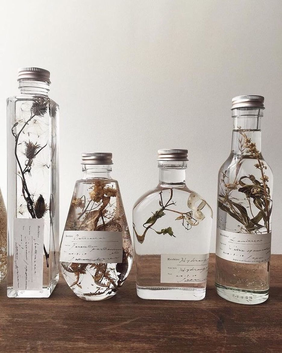 Botanical Infused Favors Gift Ideas For Bespoke Scents