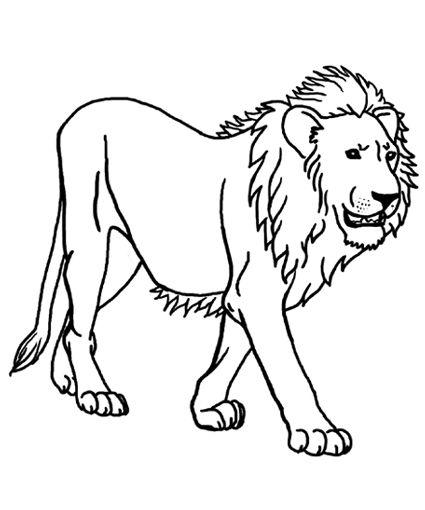 Printable Lion Coloring Sheets