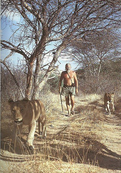George Adamson, a.k.a 'Baba ya Simba' ('Father of Lions' in Swahili), with two lionesses @ Kora National Reserve in Northern Kenya, where he successfully rehabilitated captive and orphaned big cats for reintroduction into the wild.