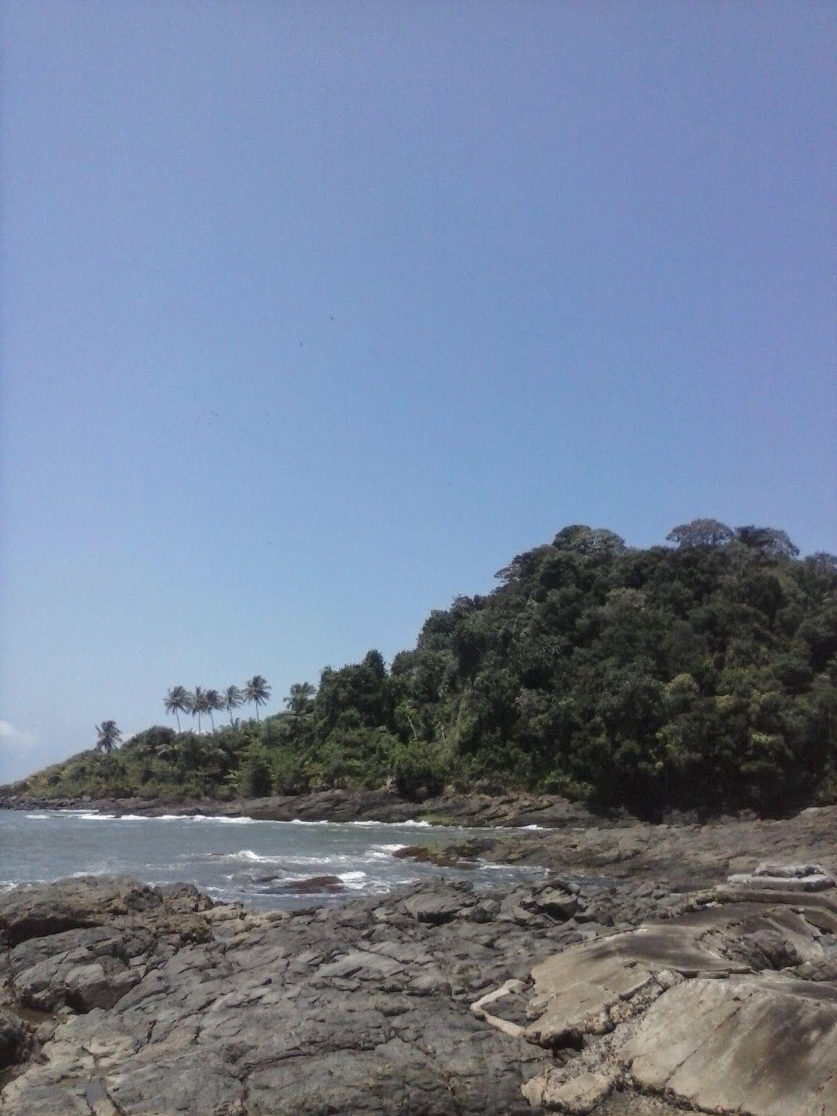 Vida Alta: A Espontânea Gaiola - Dedicado à Marilene Rangel P...