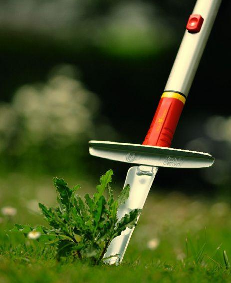 Pin On Wolf Garten Tools