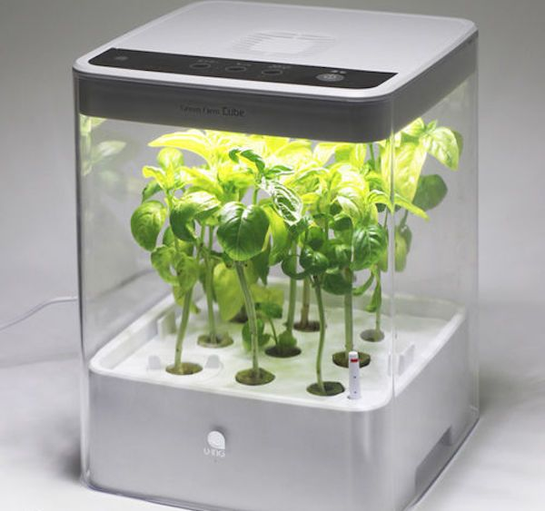 Cube Green Farm Hydroponic Grow Box By U Ing Hydroponic