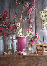 Flowering branches and weathered wood via Country Living