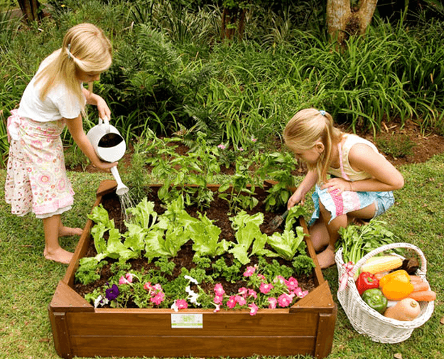 Go Green with These Big and Small Ideas   Kids vegetable garden, Gardening for kids, Kids vegetables