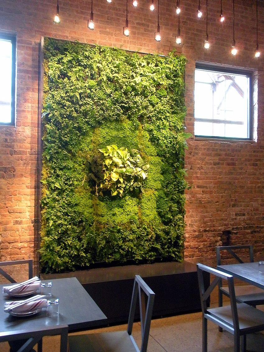 Green Wall In Restaurant