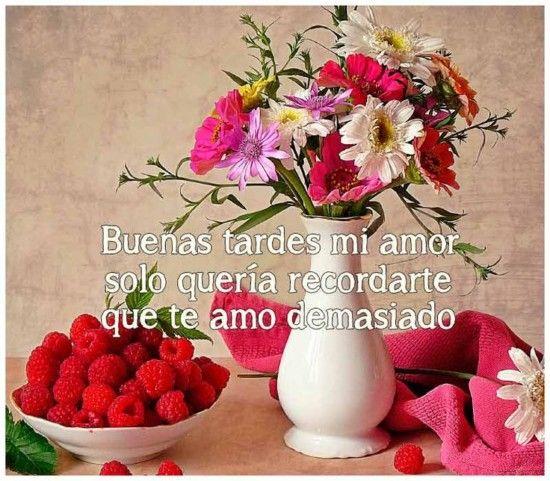 Imagenes De Buenas Tardes Mi Amor Con Frases Romanticas Y Tiernas