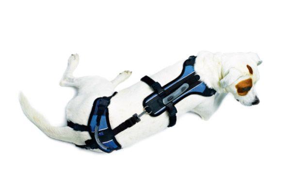 Help Em Up Dog Harness Hip Dsysplasia Dog Carrier Dog