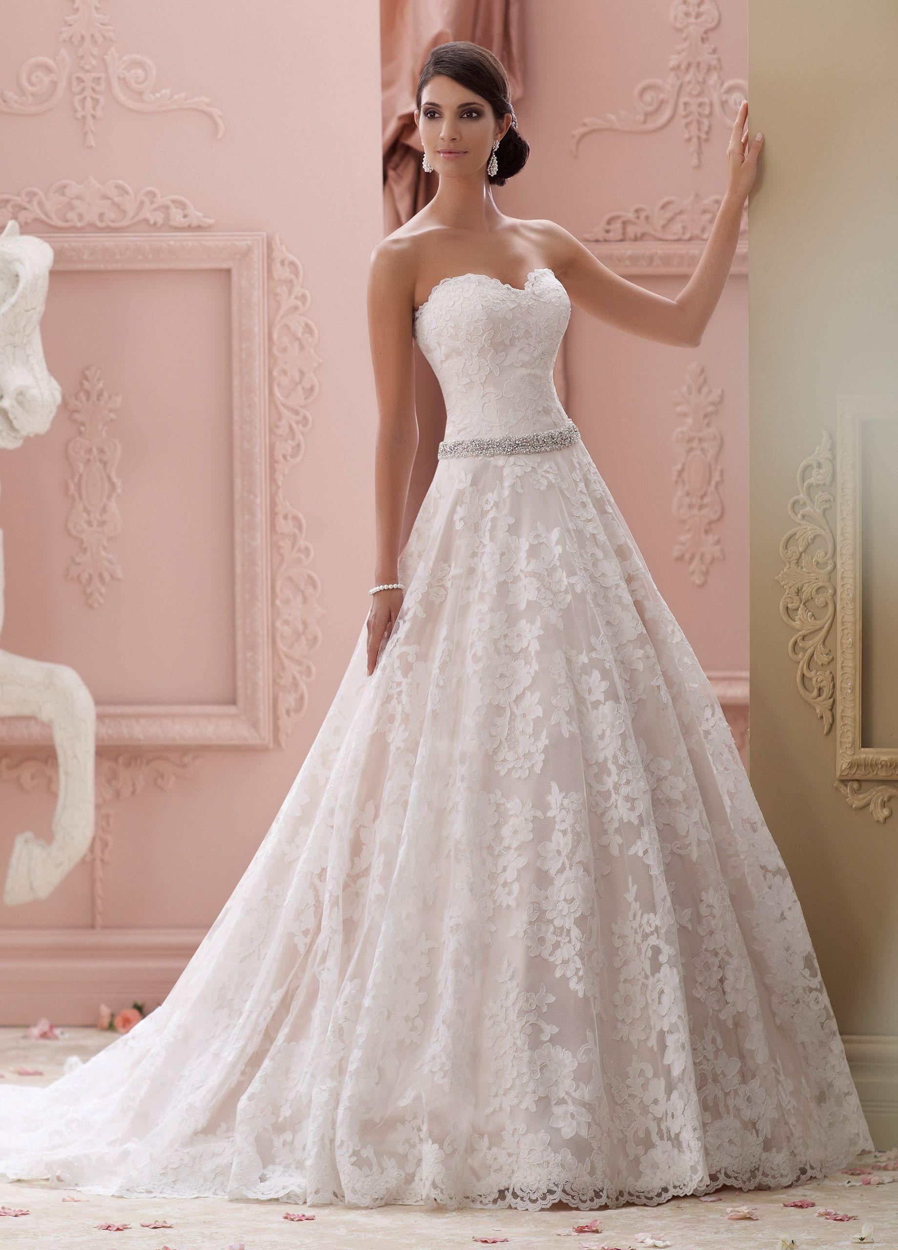 Strapless Lace & Jeweled-Belt Ball Gown Wedding Dress- 115226 Suri ...