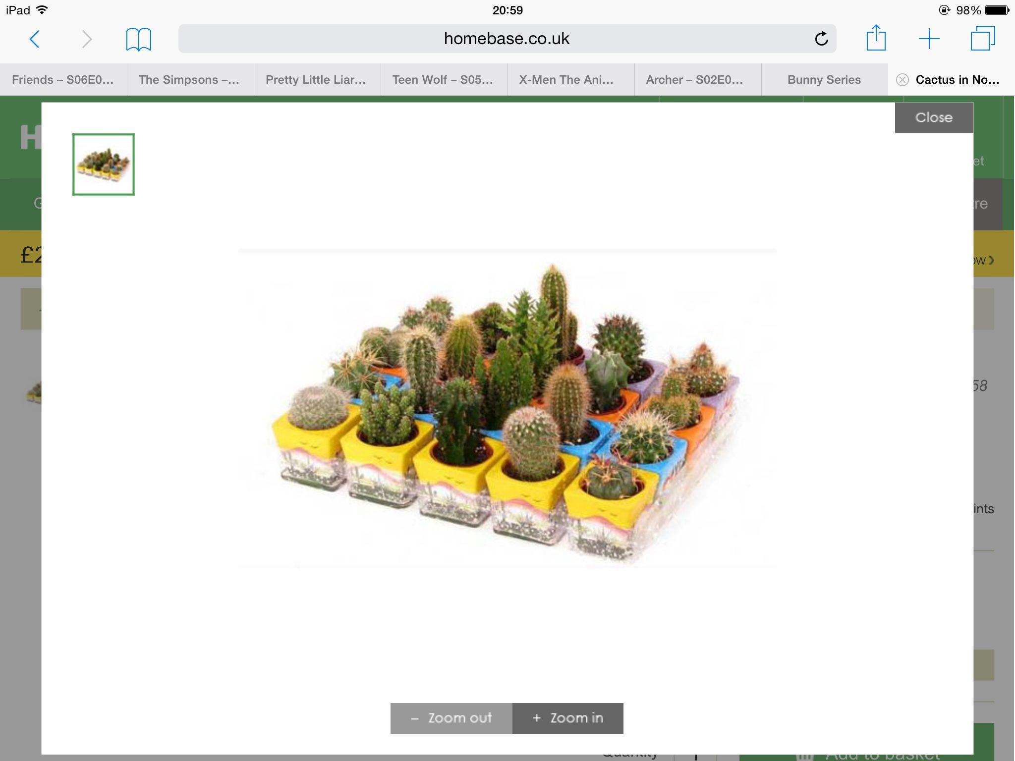 Http Wwwhomebasecouk En Homebaseuk Cactus In Novelty Pot