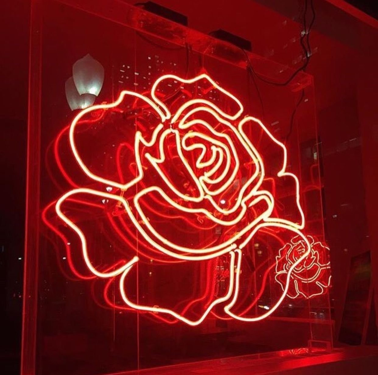 Discover Ideas About Led Neon Signs