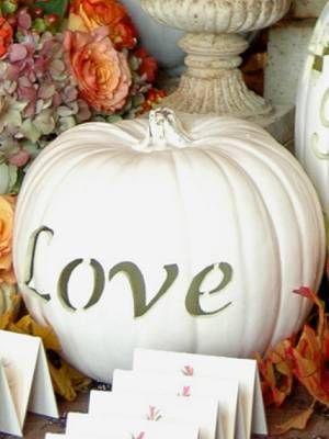 I love you, too, white #pumpkin.