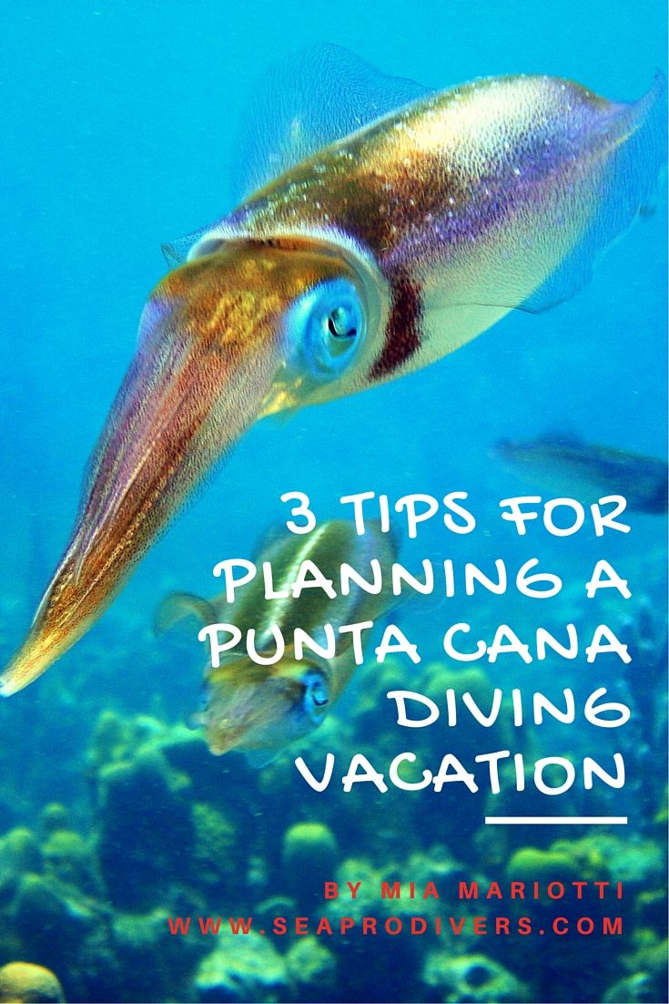 Scuba Diving In Punta Cana - 3 Useful Tips