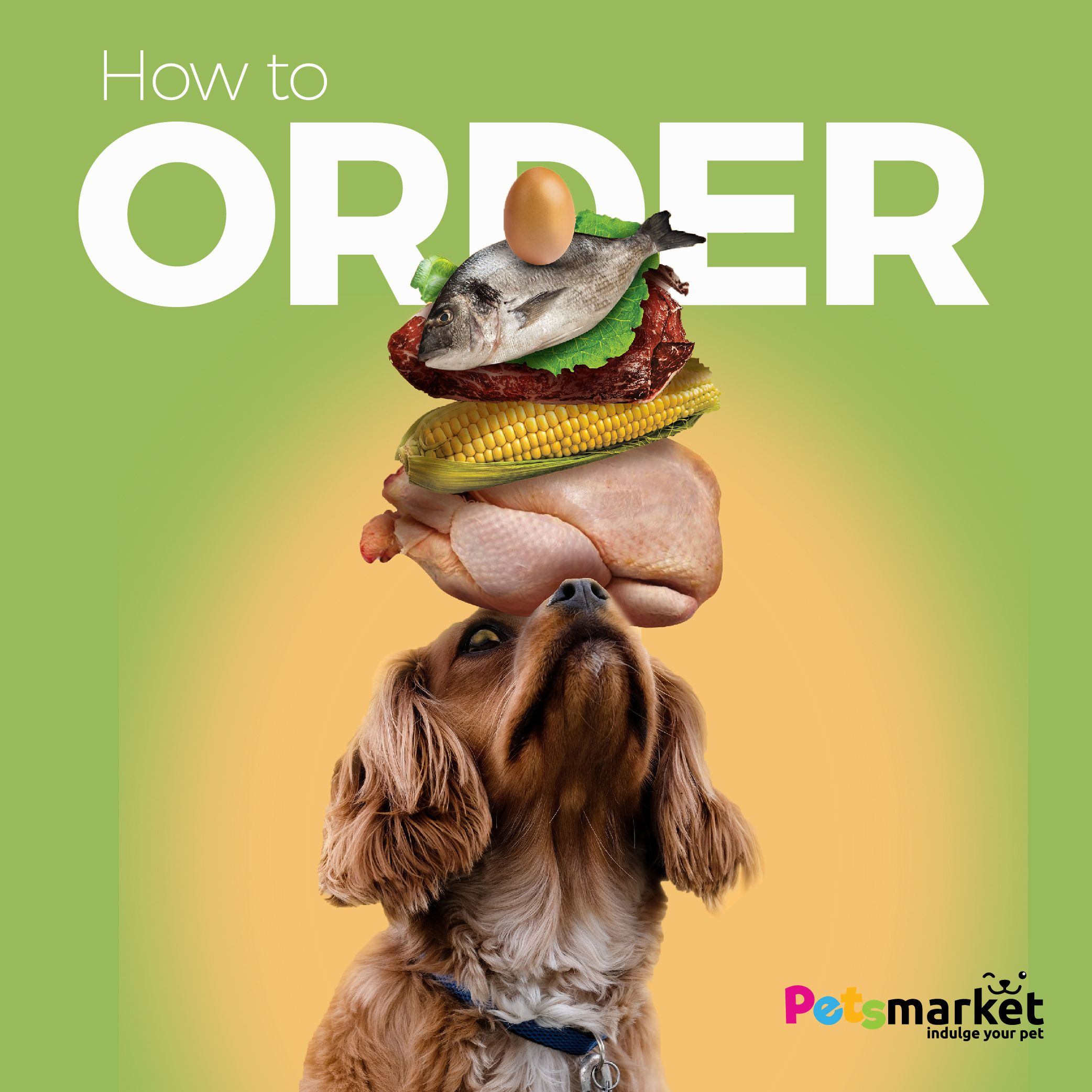 your pet need some food / toys , Okey find out the steps