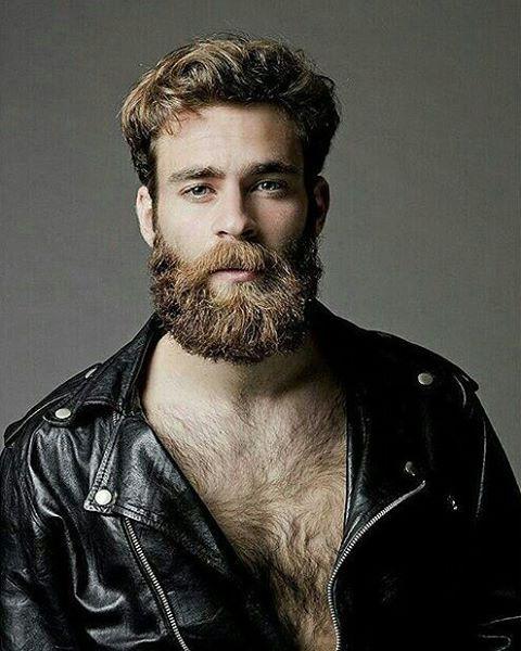 Beard sexy