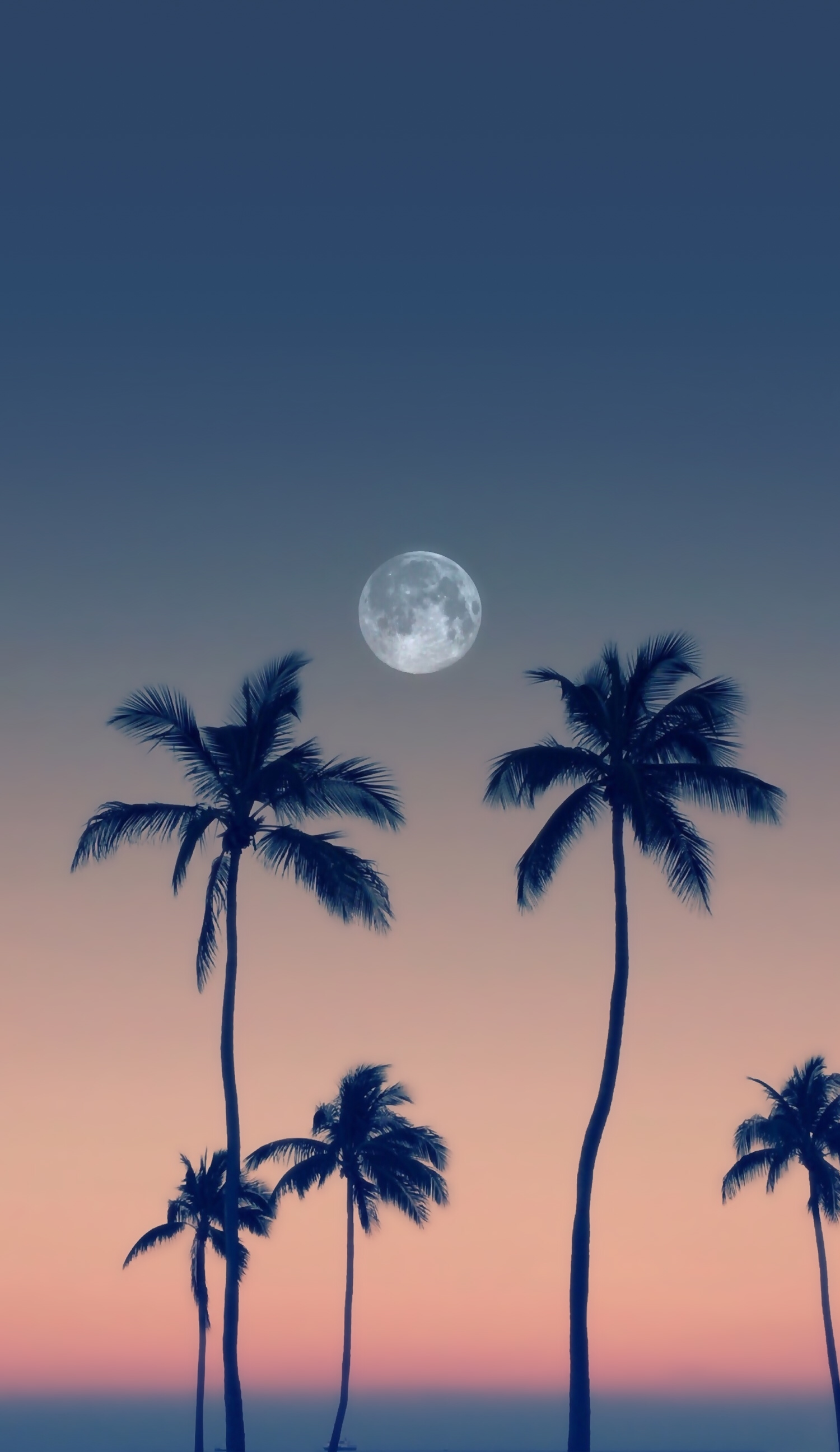 Moon Night Lua Cheia Fotografia De Paisagem Wallpapers