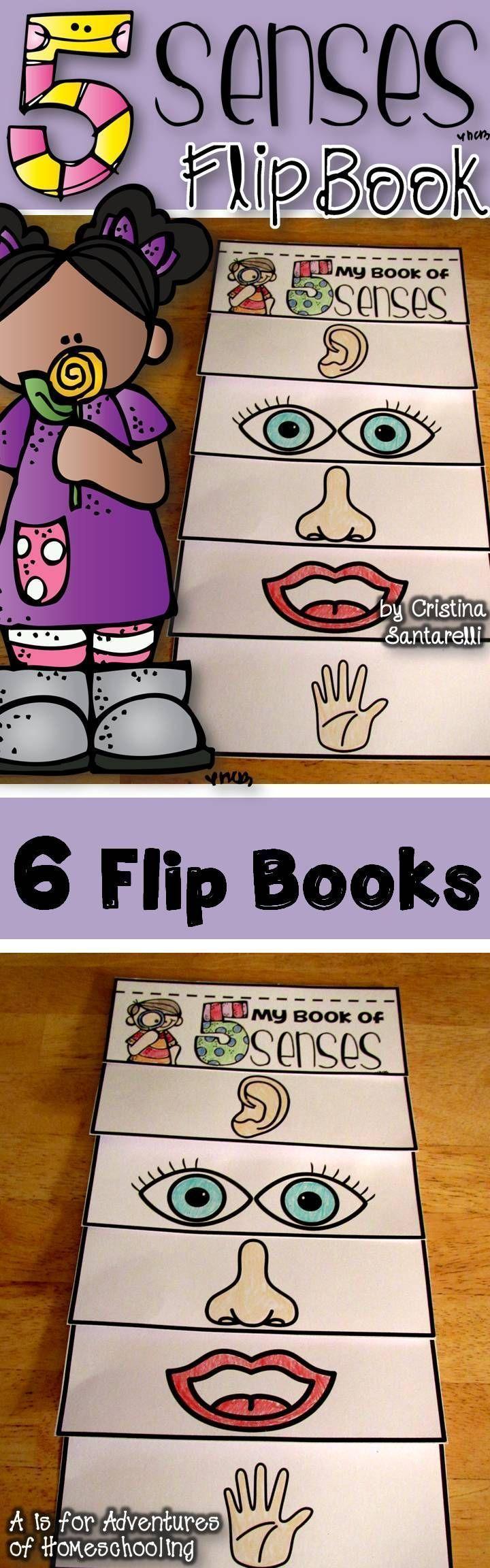 Five Senses Activities!