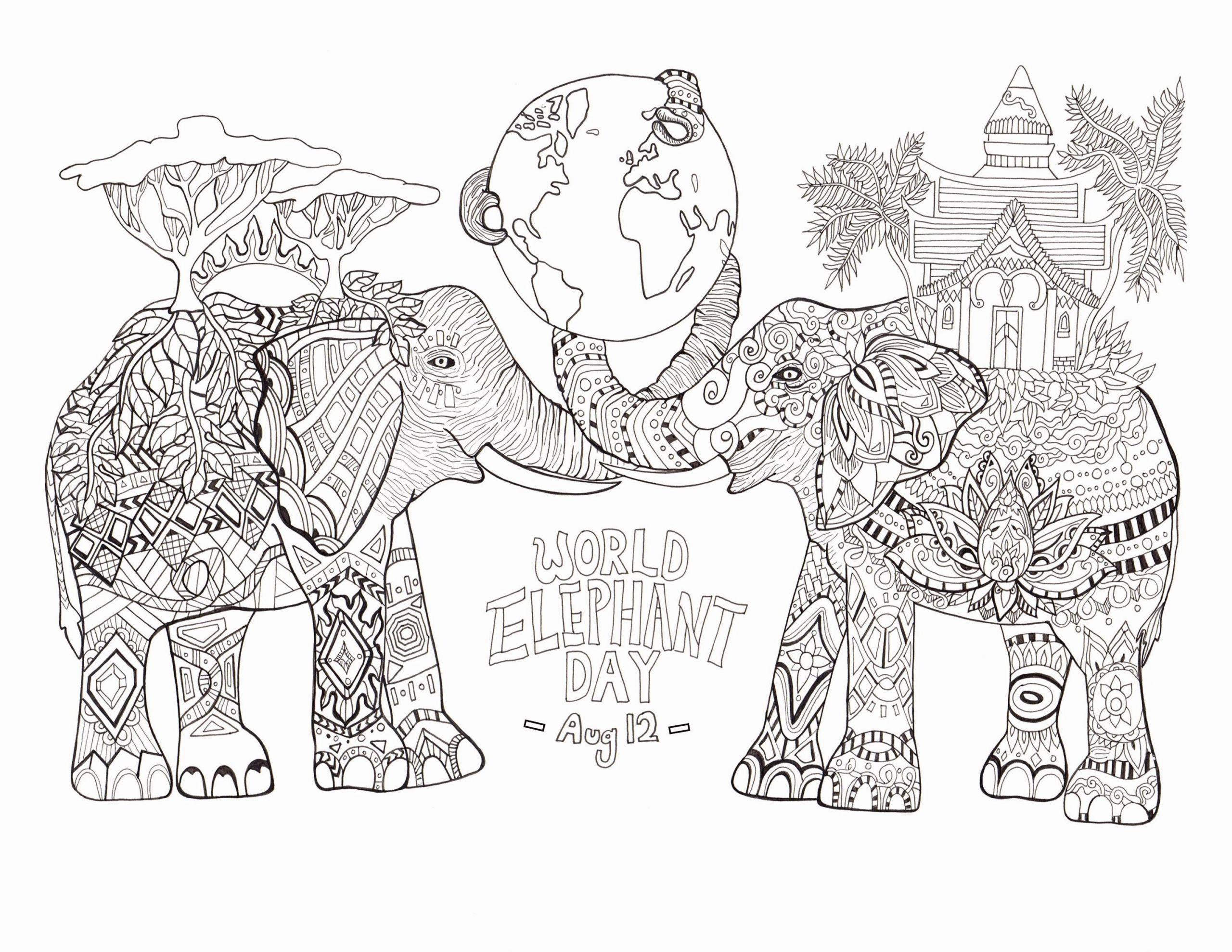 die besten von papagei mandala ausmalbilder zum ausdrucken