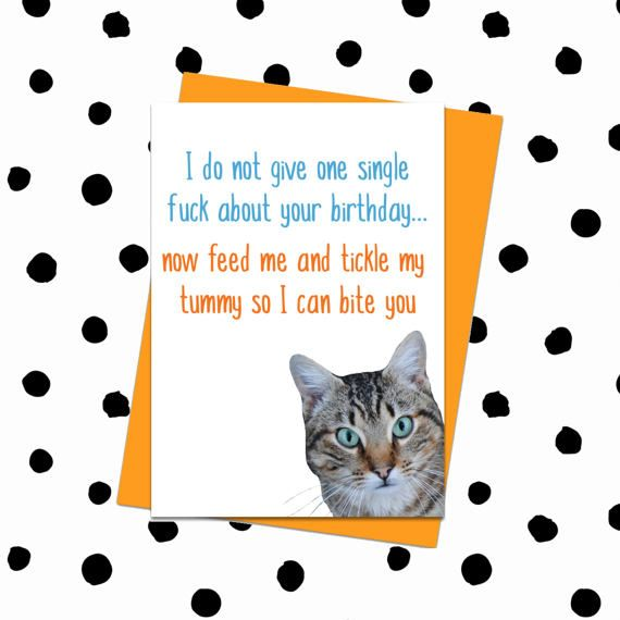 Funny Birthday Card Cat Card Birthday Card From Cat Card For Cat
