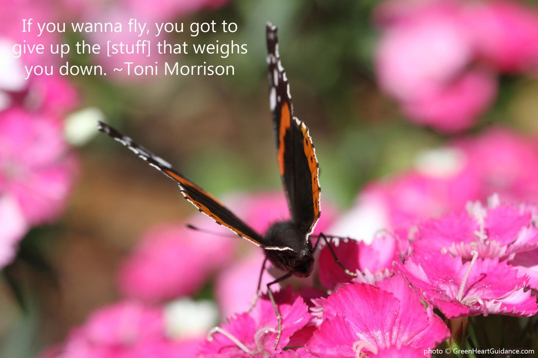 If you wanna fly, you got to give up the stuff that weighs you down. ~Toni Morrison