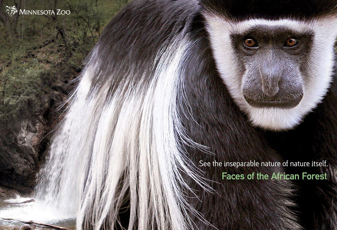 Рекламная кампания зоопарка штата Миннесота Advertising