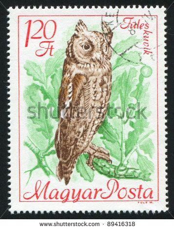 stock-photo-hungary-circa-stamp-printed-by-hungary-shows-scops-owl-circa-89416318.jpg (357×470)