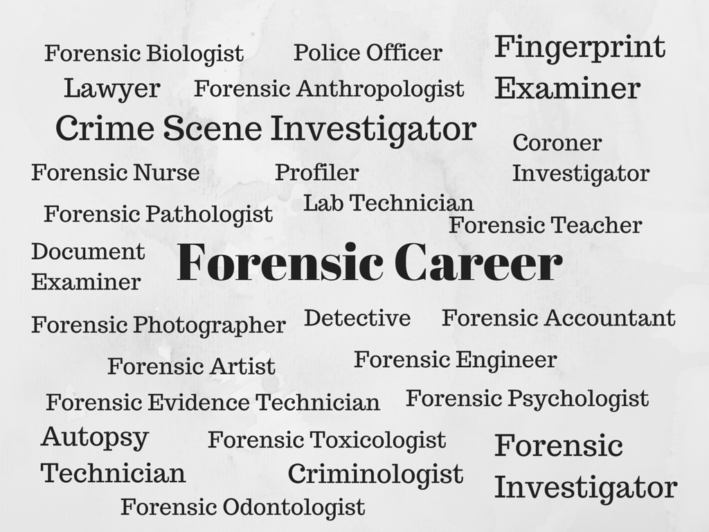 Want A Job As A Csi Enroll In Online Course That Will