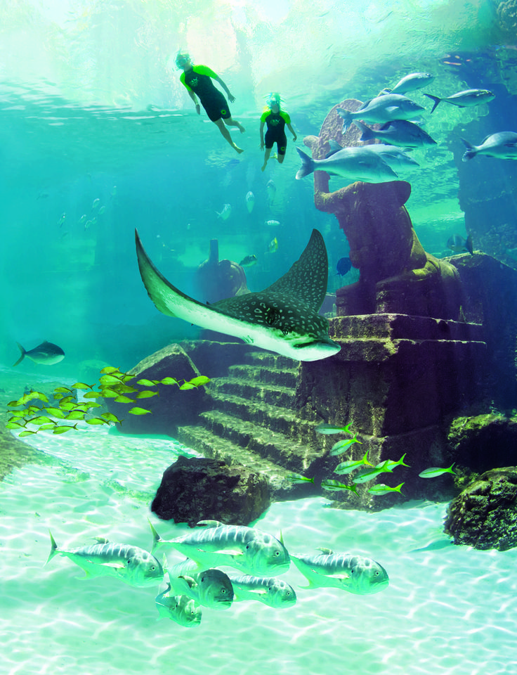 Snorkeling the Ruins at Atlantis, Paradise Island, Bahamas.
