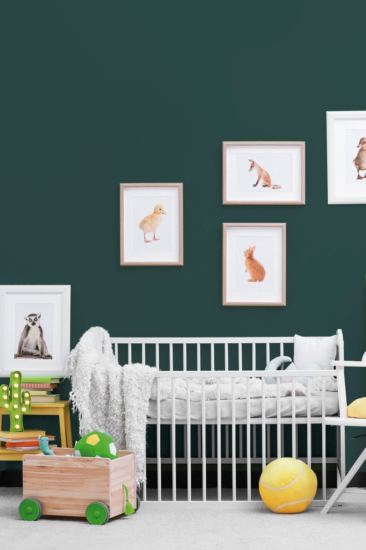 Couleur chambre bébé | baby | Kids bedroom, Bedroom themes ...