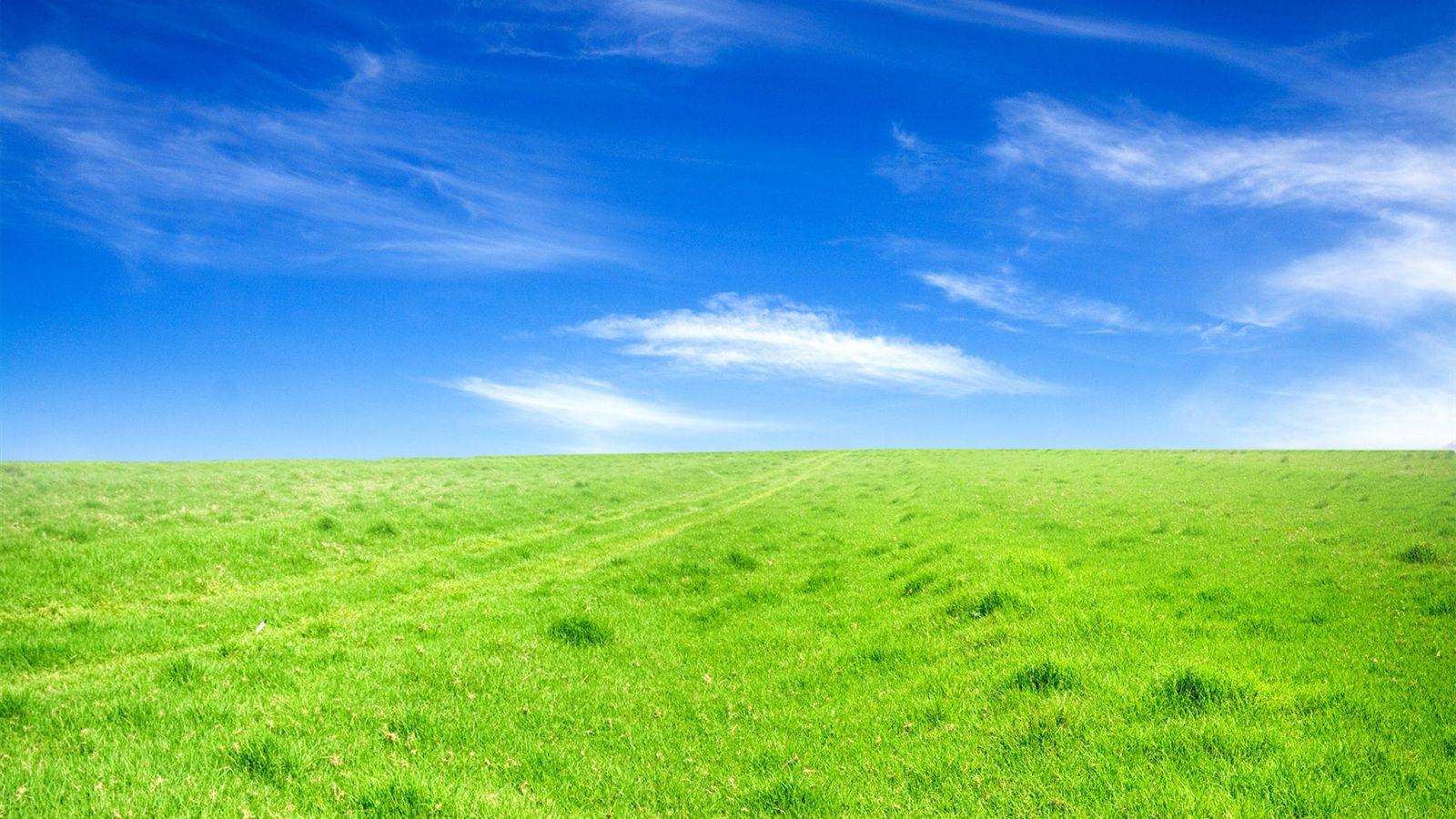 1600x900 壁紙 緑の芝生 青空 青空 緑 壁紙 デスクトップの背景