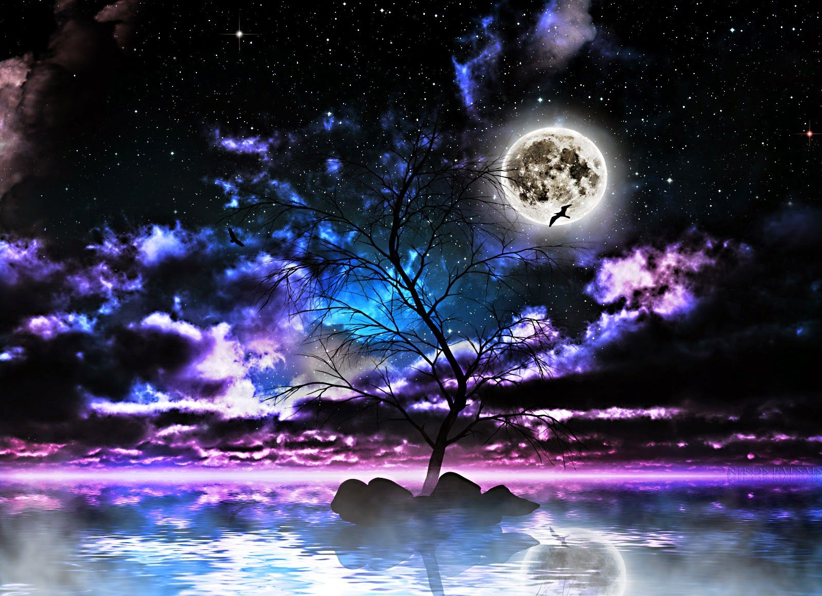 Moon Light And Stars Night Background With Trees Nature Art Images Pixhome Nature Art Night Skies Moon And Stars Wallpaper