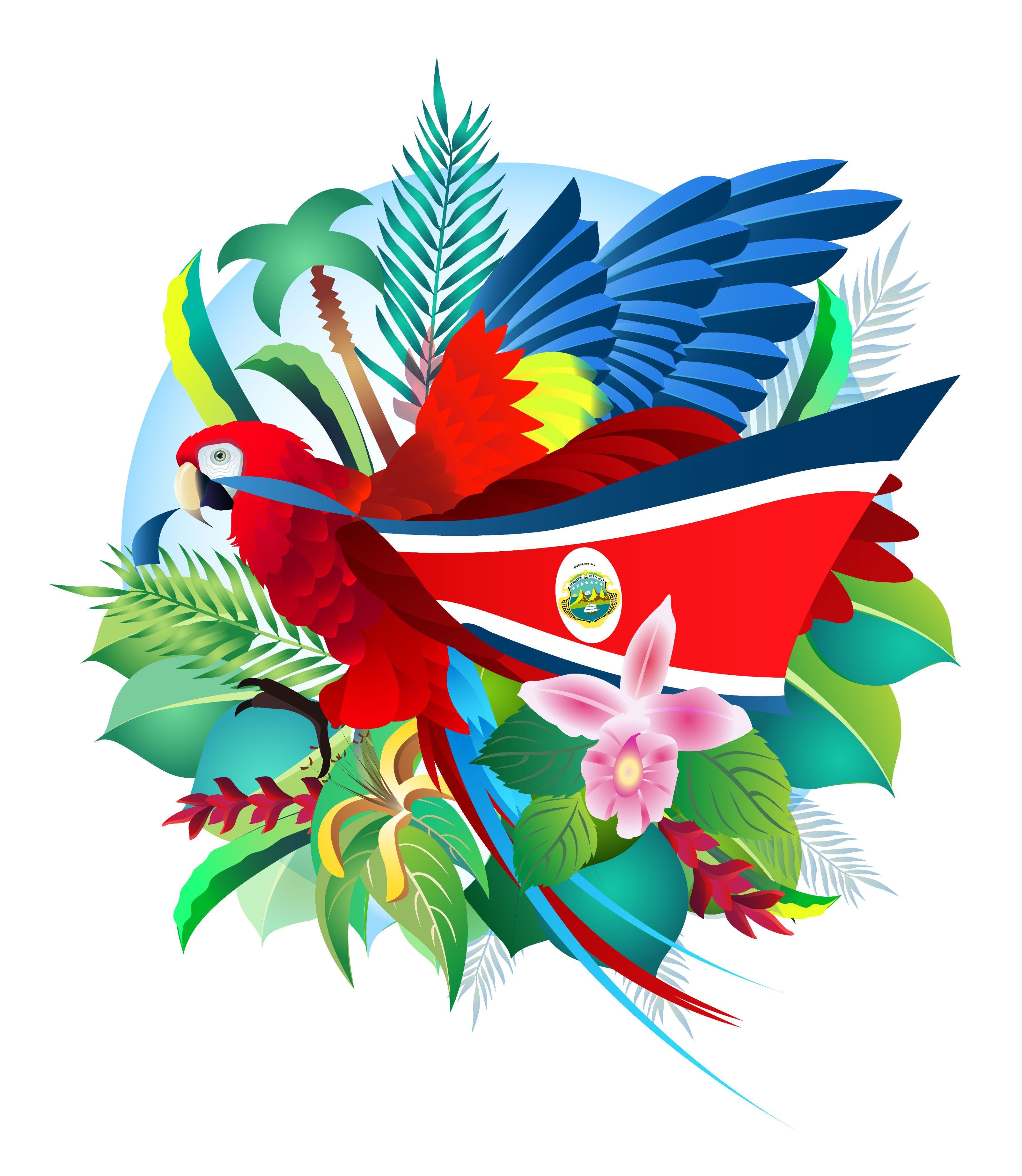 Descubre Los Modelos De Trajes Tipicos De Costa Rica De Cada Localidad