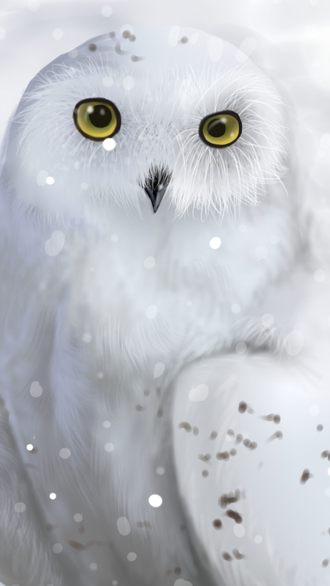 Snowy Owl 1080x1920 Mobile Wallpaper Owl Wallpaper